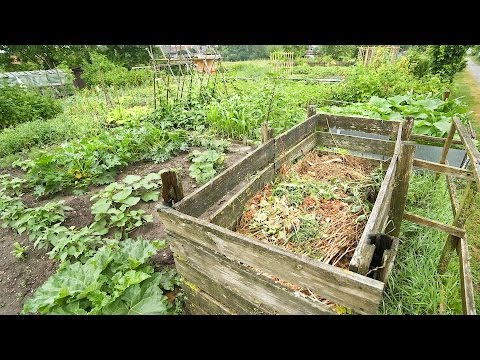Home Composting Do's & Don'ts | Green Living
