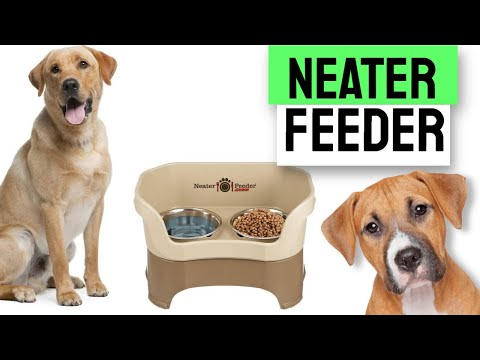 Neater Pet Brands - Neater Feeder Deluxe Dog and Cat Variations and Colors Reviews