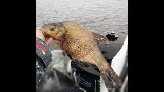 Брюки для рыбалки в украине 2020