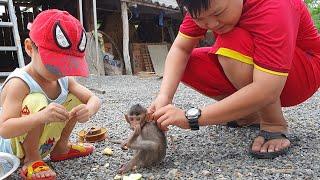 TuTu Monkey, Chú Khỉ Con Dễ Thương Của Tin Siêu Còi