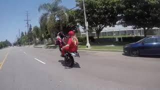 FeFe Bike Life