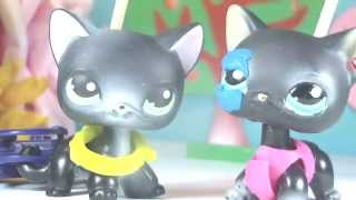 ♥ Littlest Pet Shop: Ваня и Саня (1 серия) ♥