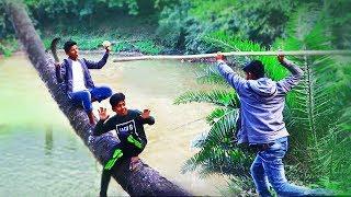অস্থির মজার ফানি ভিডিও হাঁসতে হাঁসতে পেট ব্যাথা    Funny Comedy Videos 2019