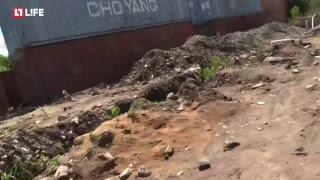Экологи опечатывают свалку в Балашихе