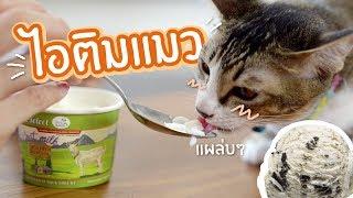 เมื่อลองให้แมวกินไอติมครั้งแรก!?