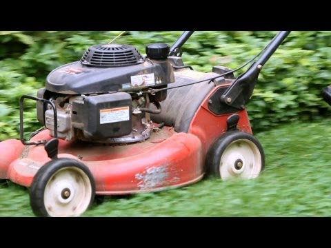 5 Grass Cutting Tips | Lawn & Garden Care