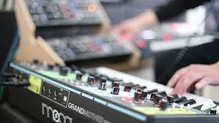 """New Life"" Depeche Mode remix/cover Moog Grandmother, Elektron Analog Keys, Behringer Dx2"
