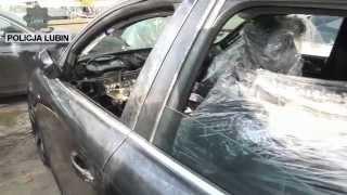 Zlikwidowana dziupla a w niej auta warte ponad 250 tysięcy złotych