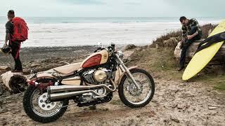 Live Free[er]   Harley Davidson