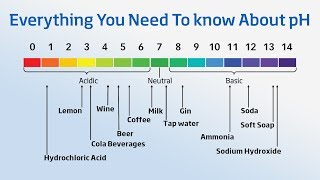 Using a pH Meter - Everything You Need to Know About pH