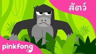 บูกีพงไพร | เพลงสัตว์ | พิ้งฟอง(Pinkfong) เพลงและนิทาน