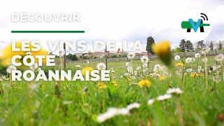 Vidéo : un reportage sur les vins de la Côte Roannaise