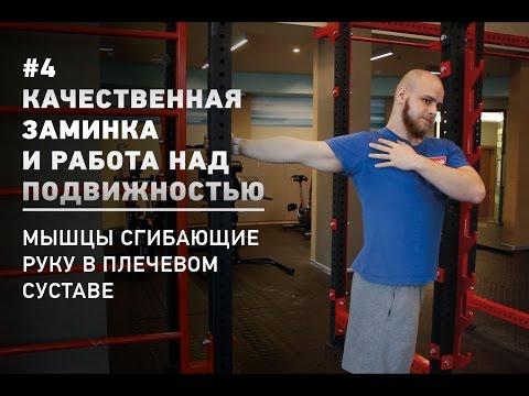 Заминка и работа над подвижностью. 4 - Мышцы сгибающие руку в плечевом суставе (Смирнов SuppleFit)