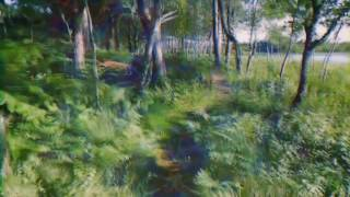 LSD/Acid Visual Simulation in a Walk Through Nature