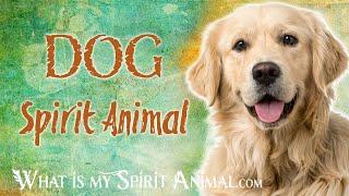 Dog Spirit Animal   Dog Totem & Power Animal Dog Symbolism & Meanings