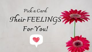 Pick A Card~ 💖 THEIR FEELINGS FOR YOU? Tarot Charm Reading *Timeless*