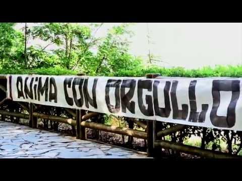 El vídeo #TeEstamosBuscando
