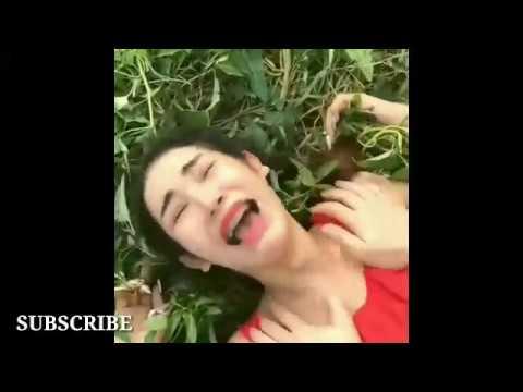 parodi lagu viral thailand wik wik wik full 1 jam non stop