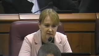 Ольга Бабенко про бюджет Кривого Рогу 2020