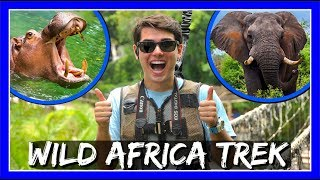 BREATHTAKING WILD AFRICA TREK AT DISNEY'S ANIMAL KINGDOM