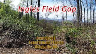 Ingles Field Gap - Bent Creek Experimental Forest - Asheville, NC