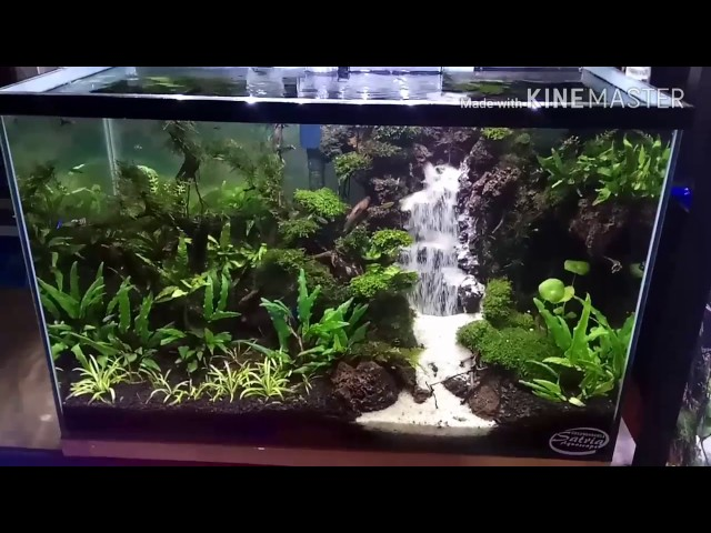 Waterfall aquascape tank 35*35*60(airterjunpasir)
