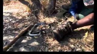 Ranger Training Part 2.mp4