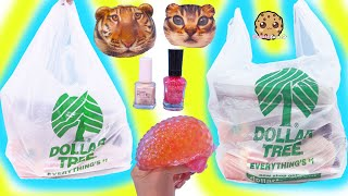 3 Big Bags of NEW Amazing Dollar Tree Store Finds ! Haul Video