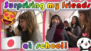 Surprising my Friends in Japan! (Going back to my Japanese high school)