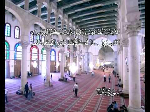 Sura Die Beute<br>(Al Anfal) - Scheich / Mustafa Ismail -