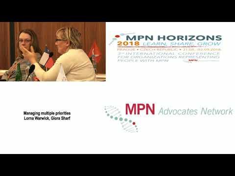 11 Managing Multiple Priorities Lorna Warwick & Giora Sharf