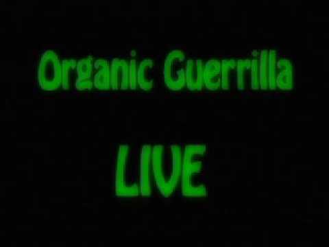 Organic Guerrilla LIVE