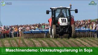 Maschinendemo: Mechanische Unkrautregulierung in Soja