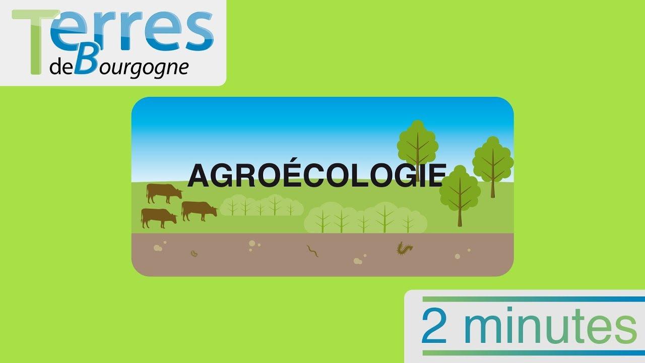 L'agroécologie, c'est quoi ? La réponse en 2 minutes