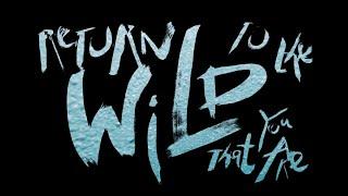 來台東,找回你的野 |Return to the Wild