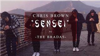 Chris Brown - Sensei | THE BRADAS #SenseiChallenge