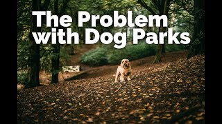 The PROBLEM with Dog Parks