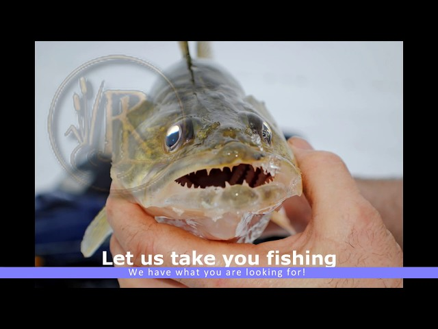 Fishing Video Gallery