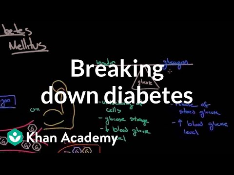 Einen Plan der Versorgung von Patienten mit Diabetes entwickeln