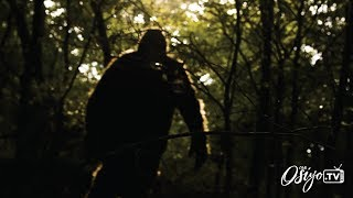 The Cherokee Search for Bigfoot