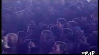 Dropkick Murphys - The Wild Rover (Live 2004)