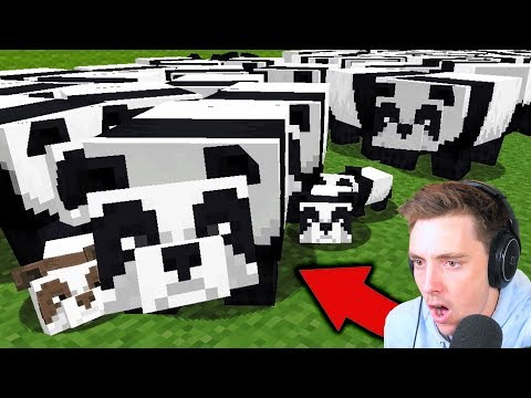 I bred a PANDA ARMY in Minecraft