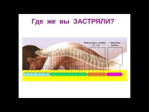 Лечение суставов бубновский и другие