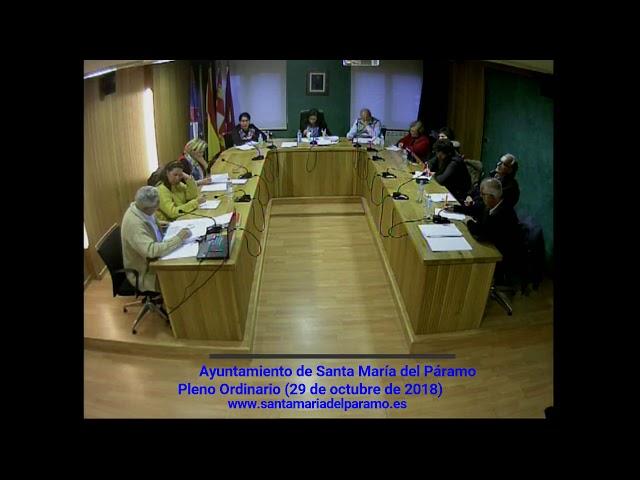 Pleno Ordinario (29 de octubre de 2018)