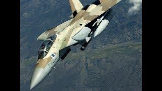 """А.Векслер. Израильские летчики встретили сергея Шойгу """"салютом"""""""