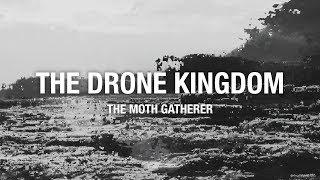 THE MOTH GATHERER