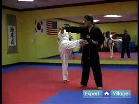 Hapkido Techniques : Hapkido Kick Defense Against a Straight Punch