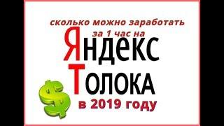 Яндекс толока 2019 сколько реально можно заработать за 1 час