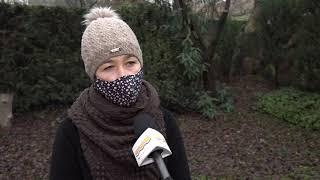 Szentendre Ma / TV Szentendre / 2020.11.25.