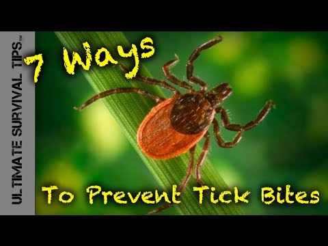 7 Ways to Prevent Tick Bites and Lyme Disease while Camping, Hiking, Fishing or Hunting